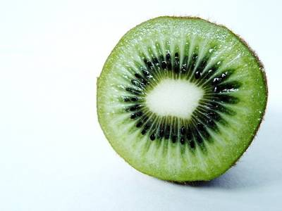 Kiwi bird cut in half - photo#19